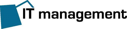 IT management
