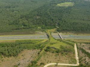 Wildlife crossing A1, Hoge Veluwe, de Borkeld, The Netherlands. Source: Zwarts en Jansma architecten