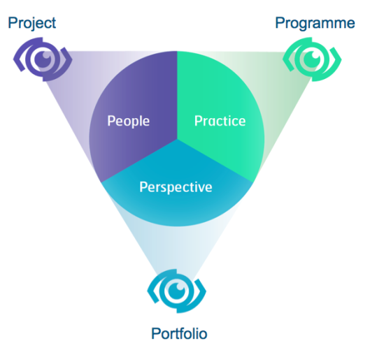 Figure 1: IPMA 'eye of competence'