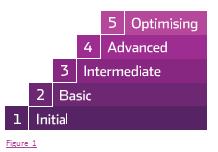 Maturity curve for Enterprise Architecture Management