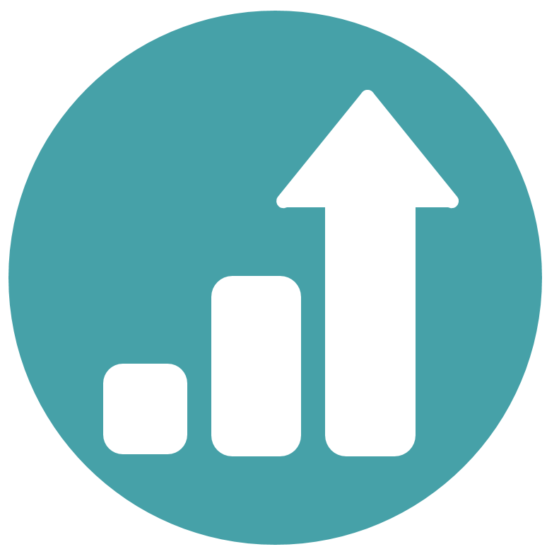 BiSL Next -The Improvement domain